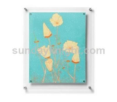Wall mounted acrylic frame